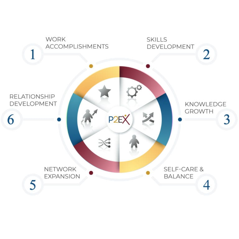 """P2Exceelence Professional Growth Wheel"""""""